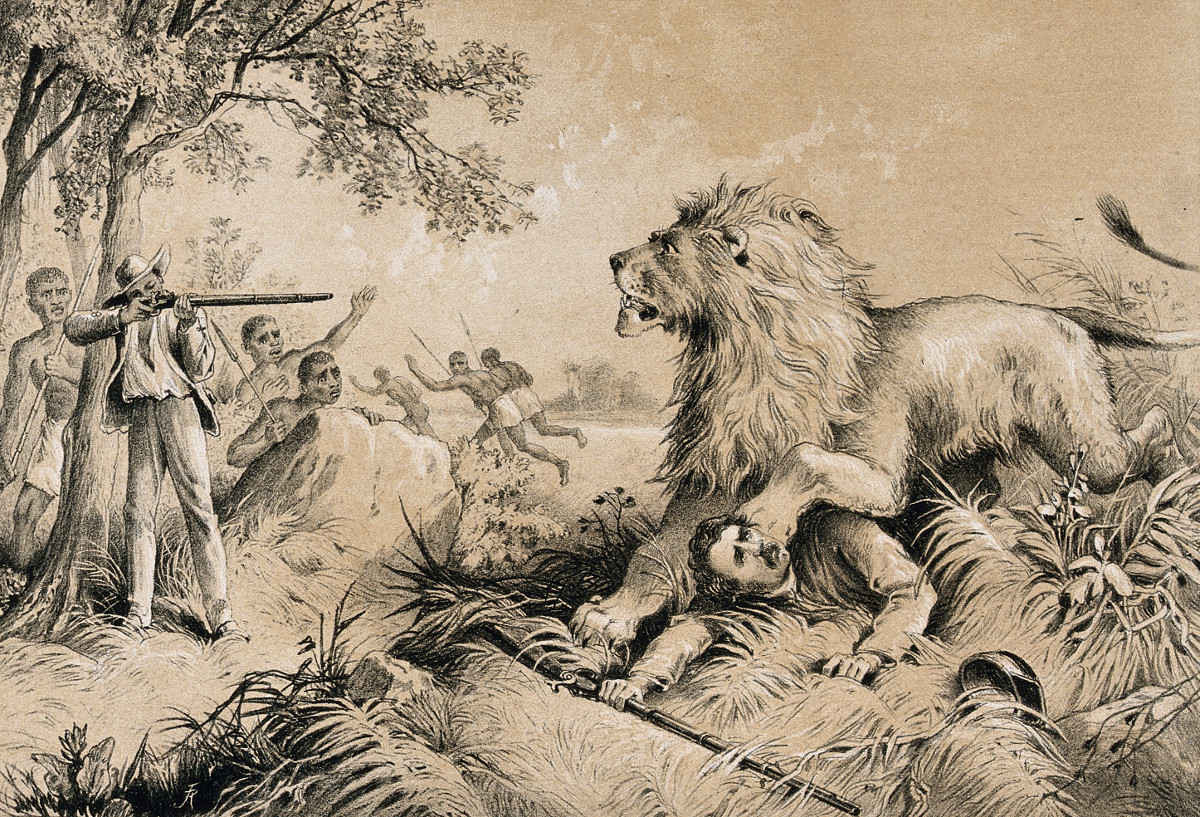 https://commons.wikimedia.org/wiki/File:David_Livingstone_attacked_by_a_lion_in_Africa._Lithograph._Wellcome_V0018847.jpg