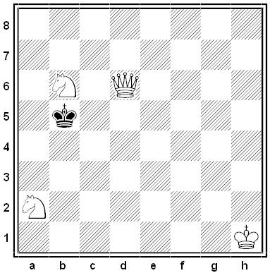 Florentine chess problem