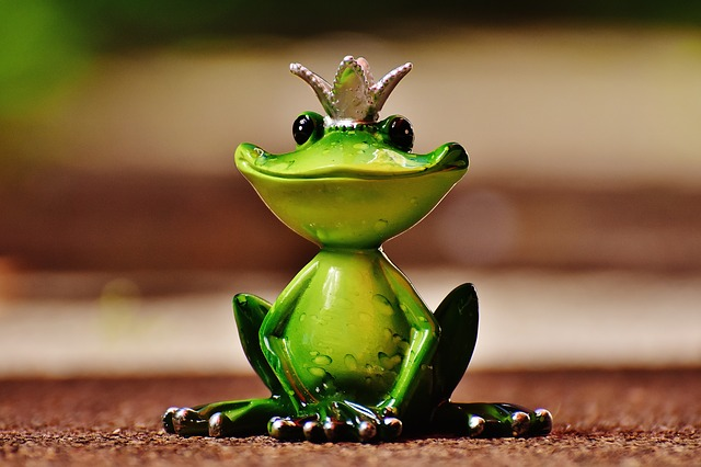 https://pixabay.com/en/frog-frog-prince-crown-fig-cute-1591896/