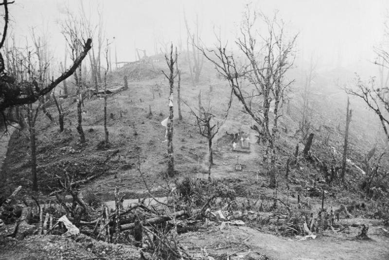 https://commons.wikimedia.org/wiki/File:IND_003698_Garrison_Hill_Kohima.jpg