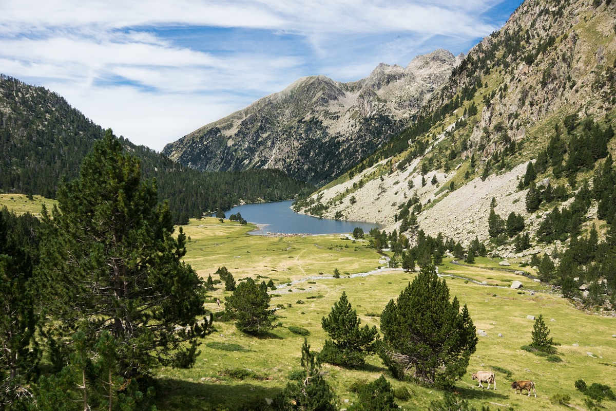 https://pixabay.com/en/pyrenees-lleida-spain-1391833/