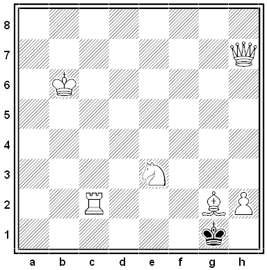 gottschall chess problem