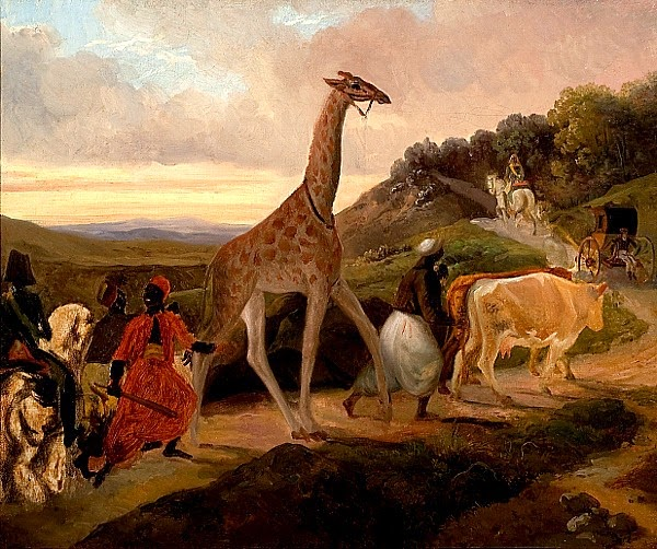 https://commons.wikimedia.org/wiki/File:Giraffe_Crossing_(1827)_by_Jacques_Raymond_Brascassat.jpg