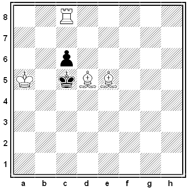 vorrath chess problem