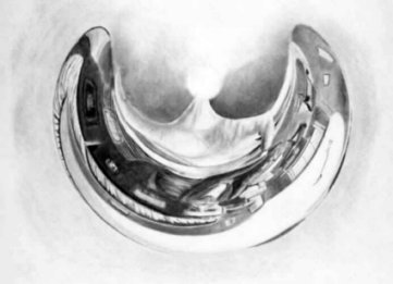 escher anamorphosis