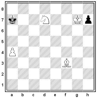 piccinini chess puzzle