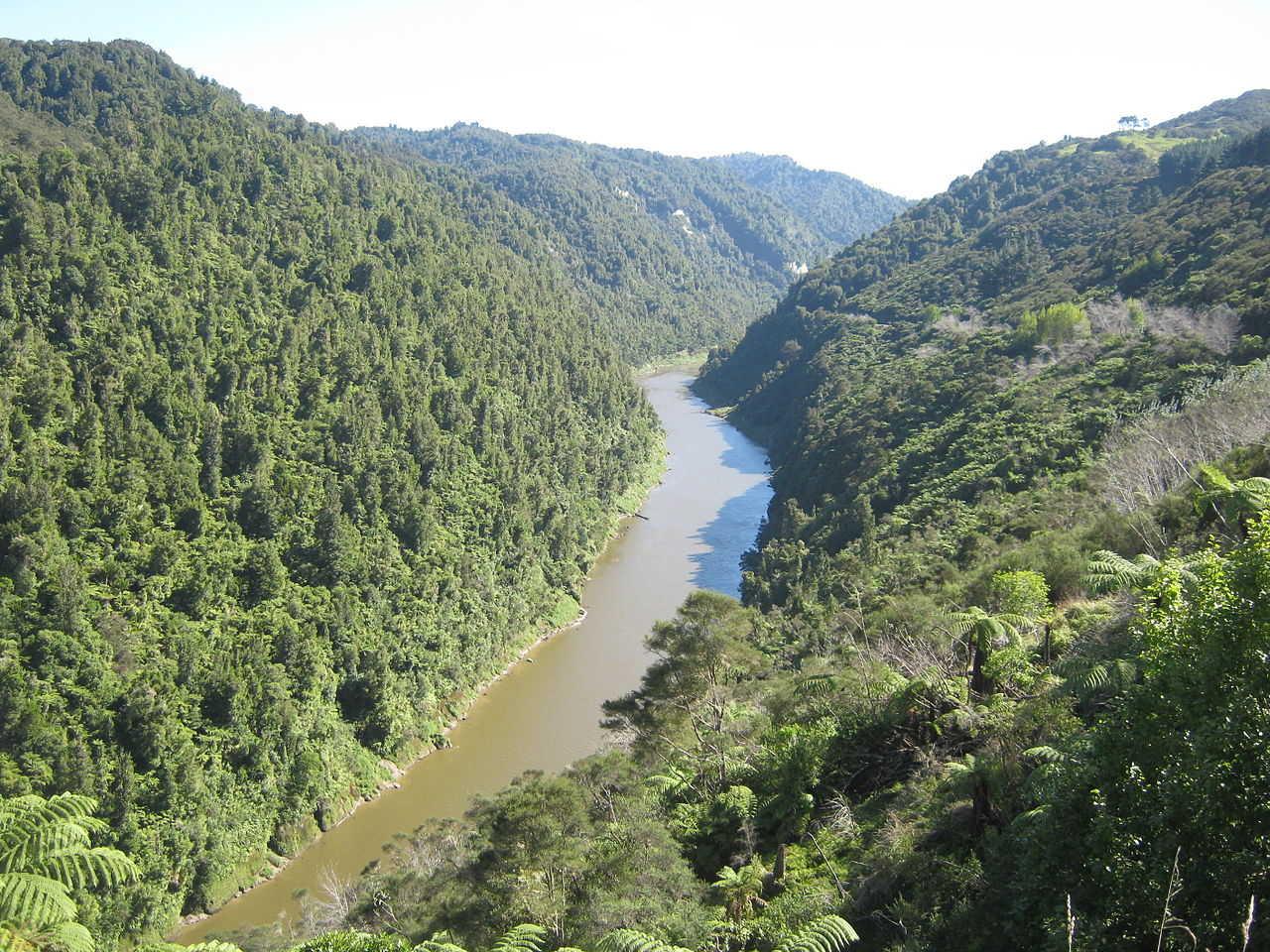 https://commons.wikimedia.org/wiki/File:Whanganui-River-01.jpg