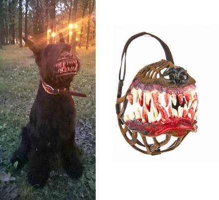 zveryatam dog muzzle