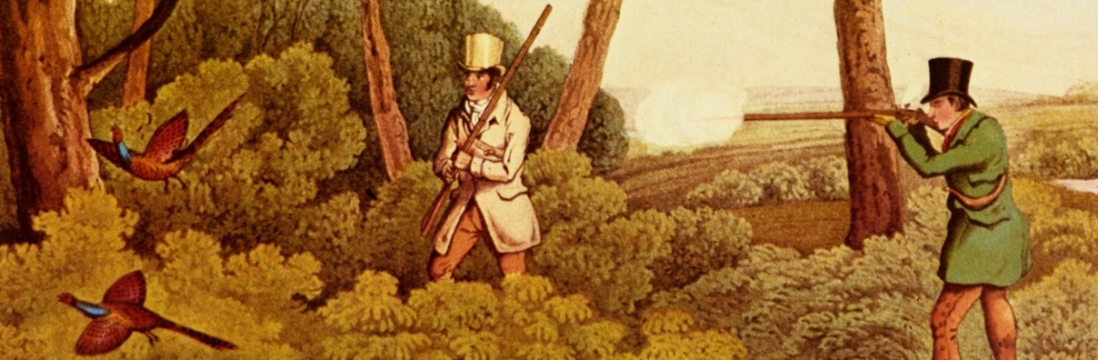 https://commons.wikimedia.org/wiki/File:Pheasant_Shooting_-_Henry_Alken.png