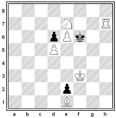 rottigni chess problem