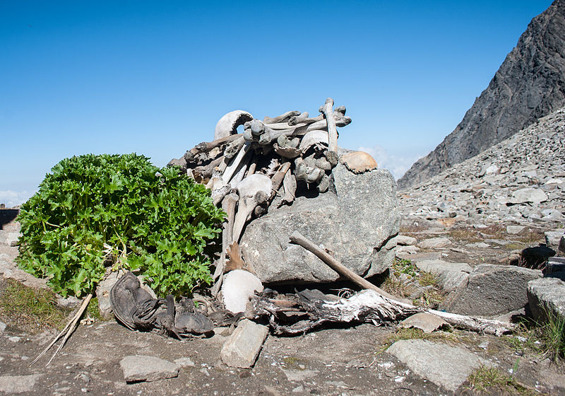 https://commons.wikimedia.org/wiki/File:Human_Skeletons_in_Roopkund_Lake.jpg