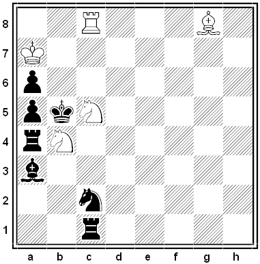 bekkelund chess problem
