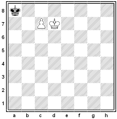steinwig chess problem