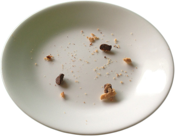 https://commons.wikimedia.org/wiki/File:Chocolate-chip-cookie-crumbs-on-plate.png