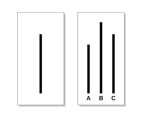 https://commons.wikimedia.org/wiki/File:Asch_experiment.svg
