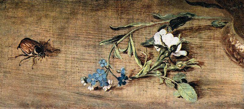 https://commons.wikimedia.org/wiki/File:Jan_Brueghel_(I)_-_Bouquet_of_Flowers_(detail)_-_WGA3602.jpg